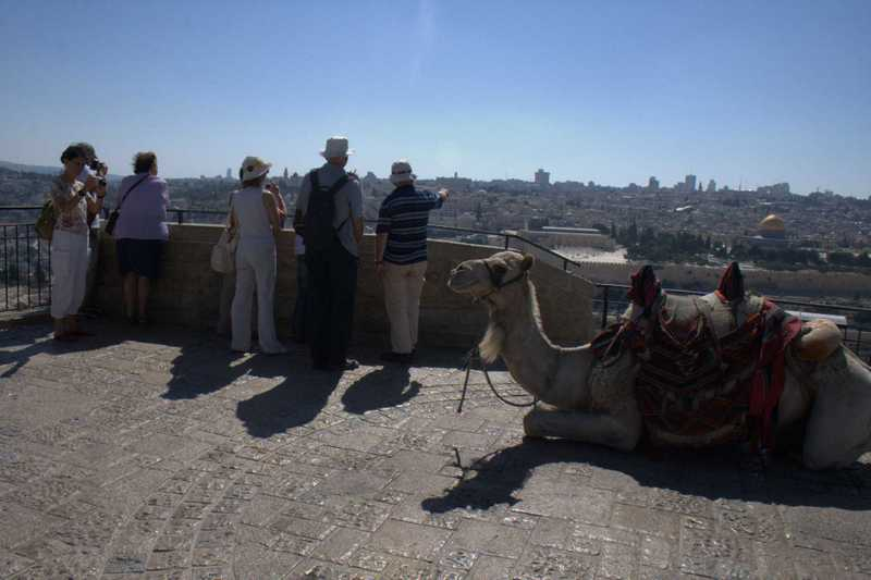 Gerusalemme, Gerusalemme...