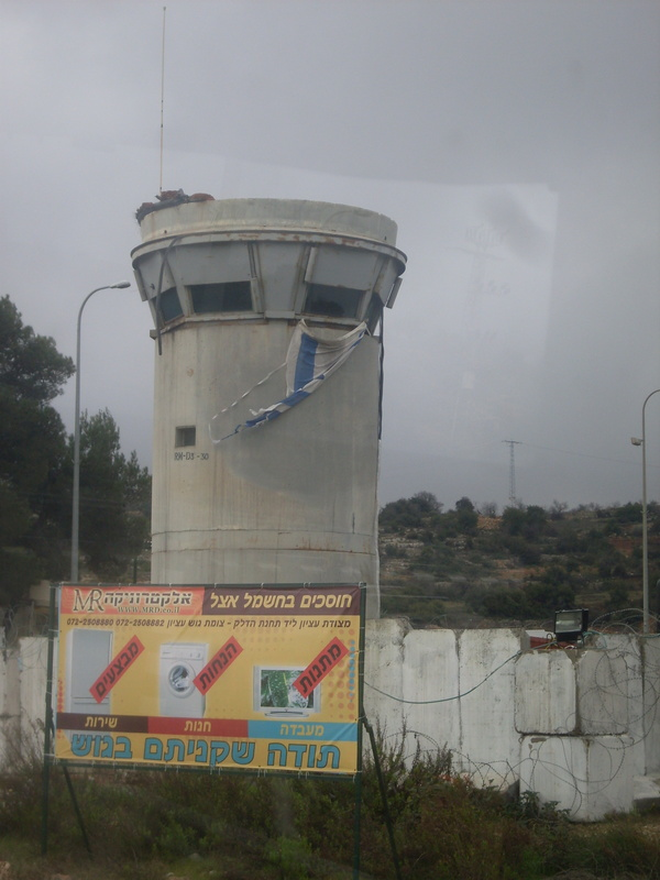 palestina 209